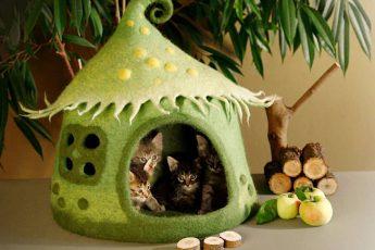 Лесной домик для кота