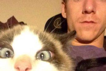 Кот и хозяин испуганы