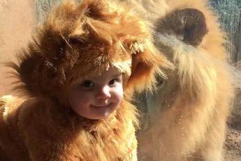 ребёнка приняли за львёнка
