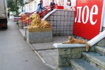 три золотых льва