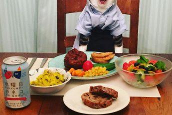 Кот Маро и изобилие еды.