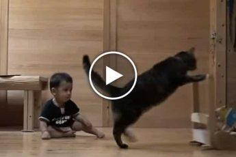 Кошка учит ходить малыша
