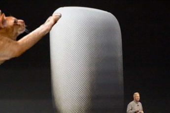 Когтеточка от Apple